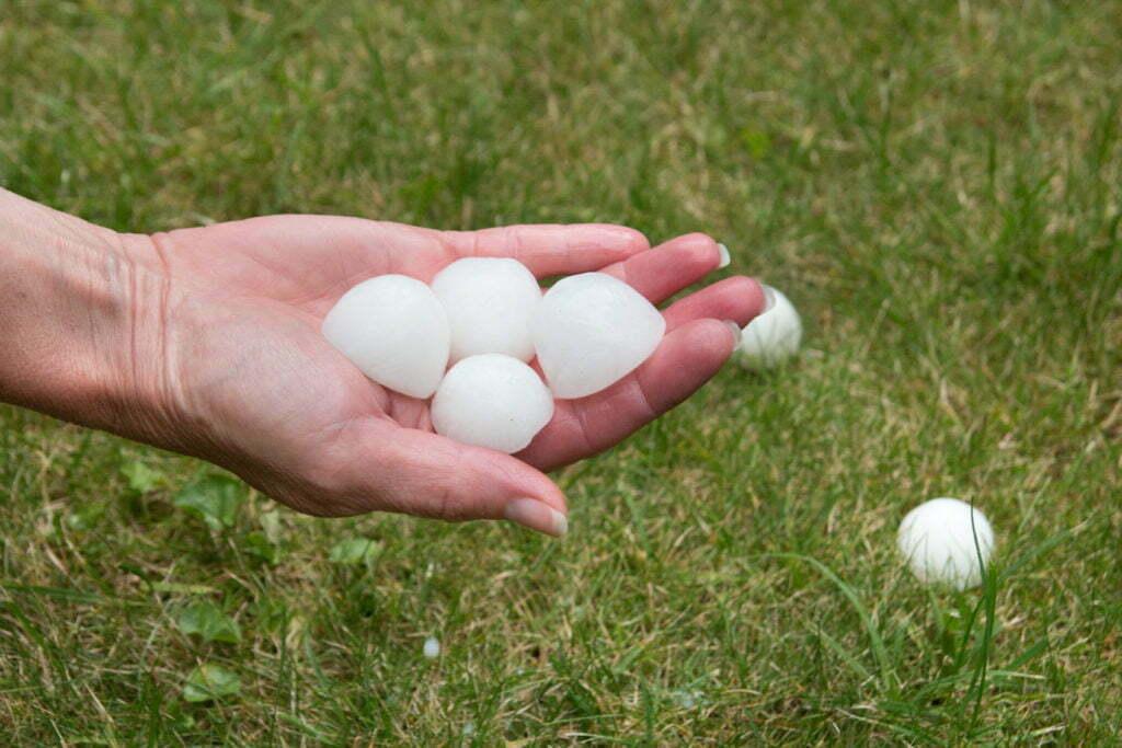 hail damage