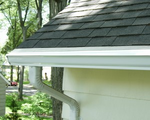 MasterShield Pitched With Roof, microfiltration gutter guard