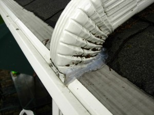 Mastershield Installation Guide For Homeowners S Roots