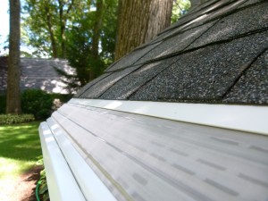 Leaf Gutter Guard Pitched With the Roof