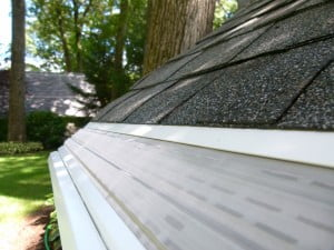 Pitched with the Roof Leaf Gutter Guard