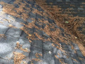 stuck in roof valley and brush off spring gutter guard