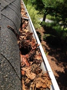 spring gutter guard wont let this happen